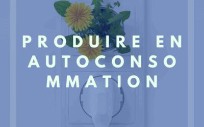 L'Autoconsommation grâce aux panneaux solaires dans l'Hérault et les départements voisin